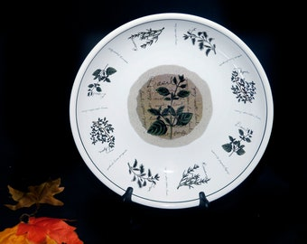 Vintage (1990s) Himark   Counseltron Savory Tyme large pasta or salad serving bowl made in Portugal. Herbs and herb wording.