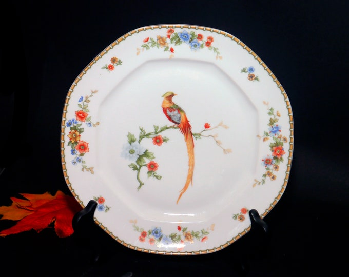 Almost antique (1920s) Altrohlau | MZ Austria | Moritz Zdekauer Golden Pheasant dinner plate. Octagonal shape bird of Paradise art-deco band