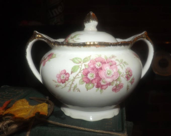 Quite vintage (1930s) Wood & Sons England WOO26 covered sugar bowl. Wood's Ivory Ware. England.