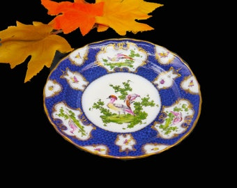 Antique 19th Century Royal Worcester Chelsea Bird garniture plate. Cobalt, chelsea birds and insects in cartouches.