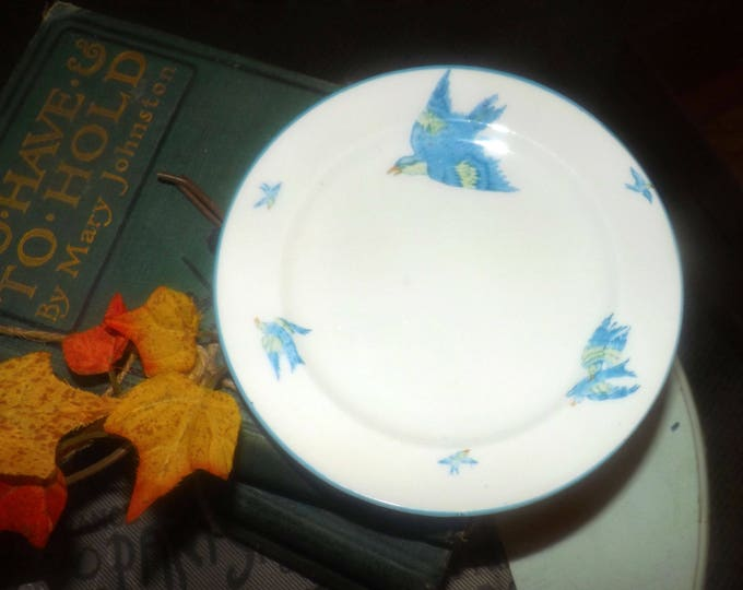 Antique (1909) Heathcote HM   Williamson & Sons HET15   Wiliamson Blue hand-painted bread-and-butter or side plate.  Bluebirds, blue edge.