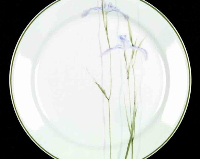 Set of 3 vintage (1980s) Corelle | Corning USA Shadow Iris dinner plates. Purple flowers, greenery. Made in USA.
