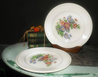 Pair of quite vintage (1935) Wedgwood Edme Garden Club hand-painted dinner plates. Multicolored pyrethrum daisies, blue band, ribbed verge.