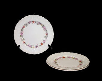 Set of three vintage (1930s) Simpsons Potters SIM6 luncheon plates made in England. Flaws (see below).