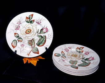 Mid-century John Maddock Old Rose dinner plate made in England. Sold individually.