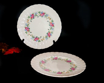 Pair of vintage (1930s) Simpsons Potters Finsbury hand-decorated dinner plates. Solian Ware made in England. Slightly different sizes.