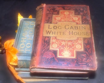 Antique (1884) first-edition antiquarian book From Log Cabin to White House: James A. Garfield. William M. Thayer. Published  USA Ward Lock.