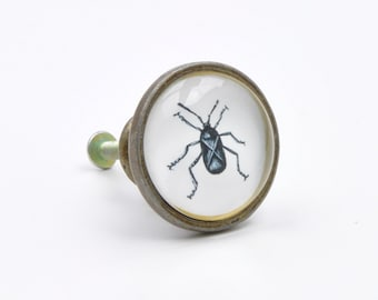 Vintage Beetle Insect Bug Knob Pull Handle For Cupboards Doors Cabinets Drawers Furniture Kitchens Plus Fitting Hardware