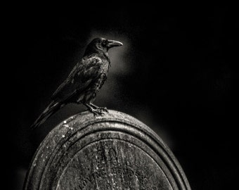 """A Dark and Gothic black and white fine art photographic print of a Crow on a Gravestone. Wall Art  """"Morticia"""" one of the graveyard crows."""