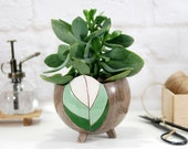Modern ceramic planter for succulent, cactus, air plants planter pot with hand carved leaf texture farmhouse decor garden gift