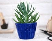 Modern ceramic planter for succulent, cactus, air plants mini planter pot for succulent, cactus, air plant desk decor garden gift