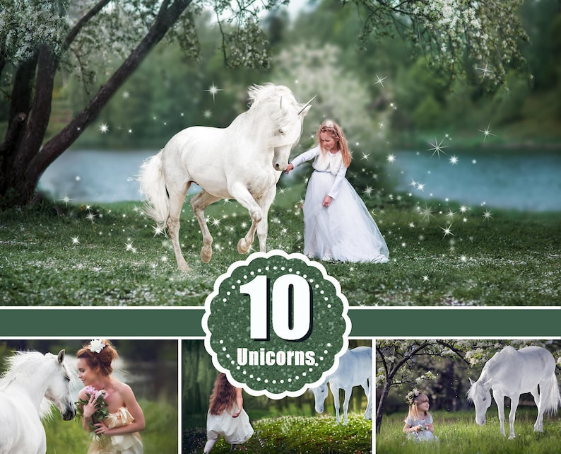 10 Majestic unicorn horse overlays realistic animal white image 0