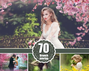 70 tree branch flower Photo Overlays, Photoshop Mix overlay, Summer spring painted overlays, digital  Backdrop, Photo art, png file