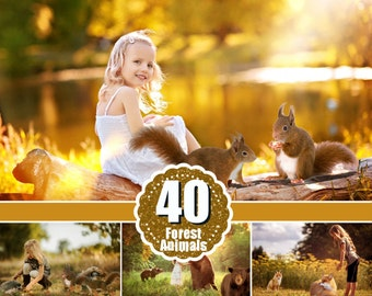 40 different forest wild animals photo overlays squirrel, hedgehog, rabbit, woolf, bear, fox, raccoon, reindeer, photoshop overlay, png