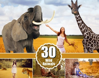 30 Photography wild zoo animals, photoshop overlays, animal clipart clip art, scrapbooking, line, giraffe, tiger, elephant,leopard, png