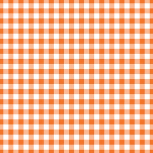 Florida Orange Gingham on White Cardstock Paper