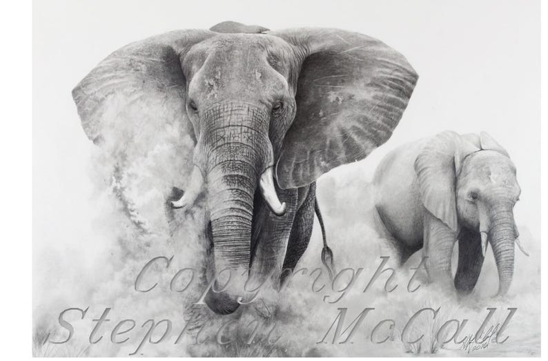 Originale Disegno A Matita Elephants In The Dust Etsy