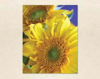 Art Print – Sunflowers, 8x10 Flower Wall Art, Sunflower Photograph, Framed or Unframed