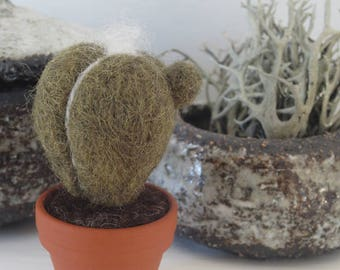 Miniature felt CACTUS in terracotta pot small Mother's Day gift keepsake ornament