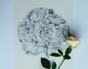 Original Hollyhock Floral Pen Drawing