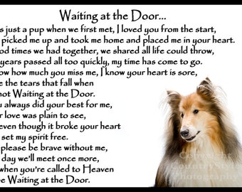 Rough Collie Sheepdog Dog Memorial Fridge Magnet pet loss bereavement gift