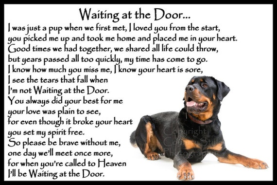 ROTTWEILER Can/'t Have Just One FRIDGE MAGNET ROTTIE