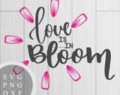 Love is in Bloom - SVG, P...