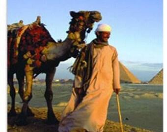 Luxor Oils