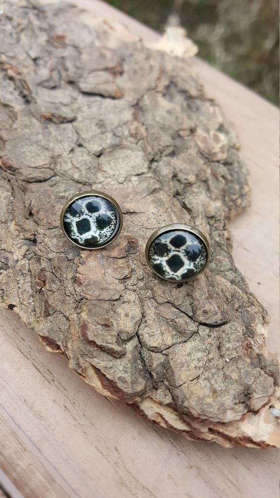 Snakeskin Pattern Bronze Post Earrings
