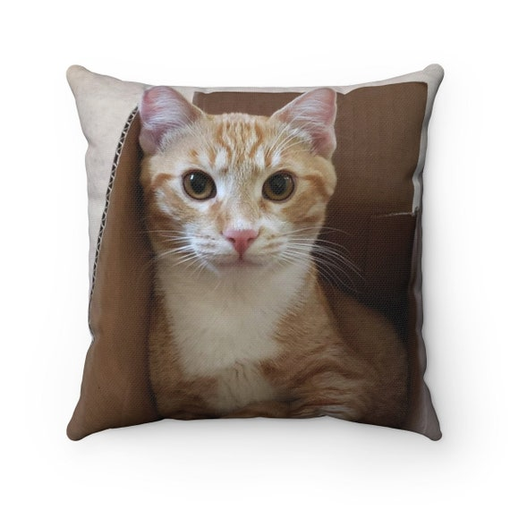 Cat in a Box - Spun Polyester Square Pillow