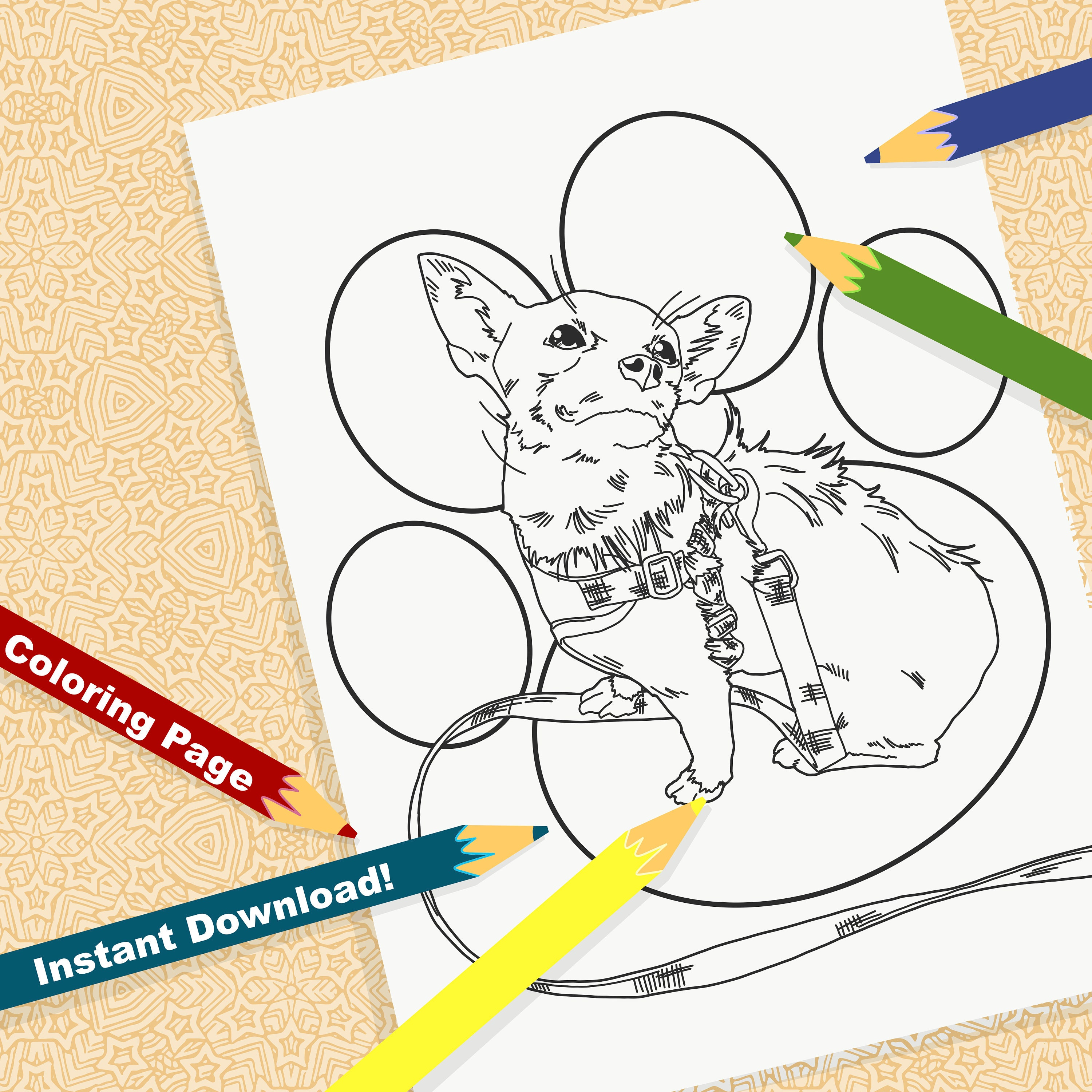 Chihuahua Coloring Pages - Coloring Home   3000x3000