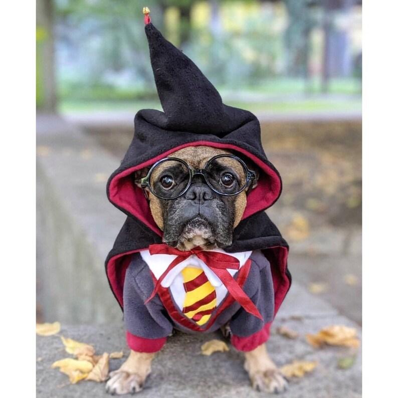 Dog Costume  Cosplay  Halloween Pet Costume  Harry Theme  image 1