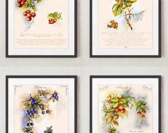 Stampe per cucina Quadri cucina Stampe con frutta Pianta di | Etsy
