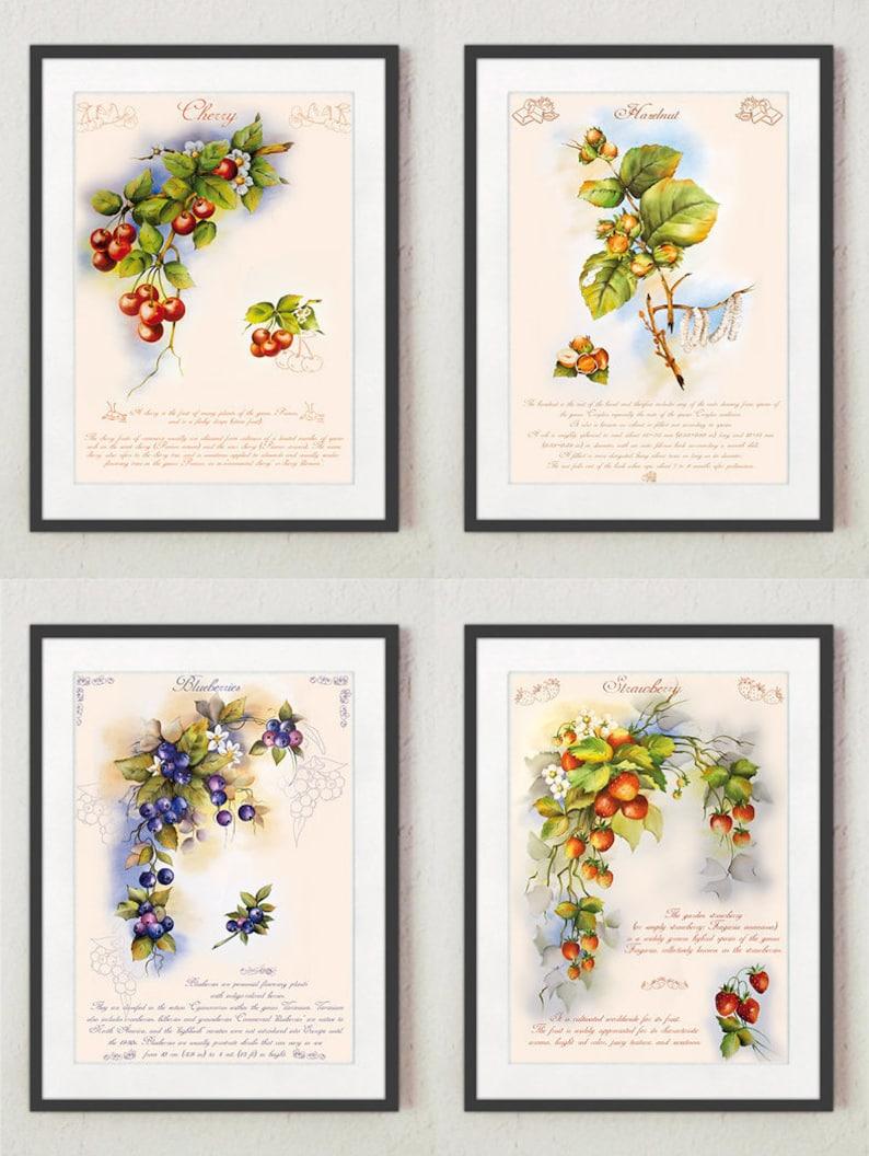Stampe per cucina Quadri cucina Stampe con frutta Stampe | Etsy