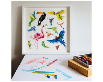 Collection of Tropical Birds: Giclée Print of illustration by Laura McKendry