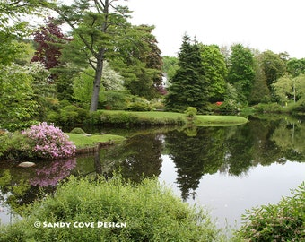 Asticou Gardens, Mt. Desert Island, Maine, Azaleas, Acadia, Flowers, Pond, Reflection, Fine Art, Wall Art