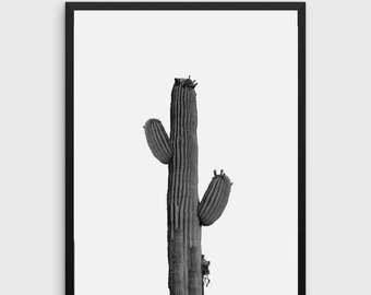 Cactus Print | Minimalist Print, Black and White Wall Art Print, Modern Decor, Digital Printable Art, Landscape Photography Print