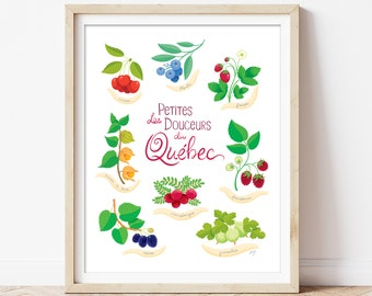 Berries from Quebec, illustration, poster, kitchen decor, travel souvenir from Quebec, strawberry, blueberry, rasberry, plant, flower poster