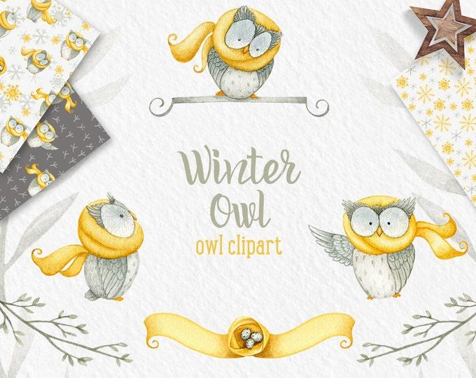 Winter Owl clipart, winter clipart, Owl clipart, digital paper, snow patterns, winter patterns, winter clip art, mustard, watercolor digital