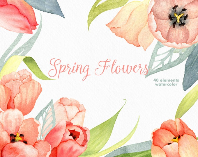Watercolor flower clipart, Tulip clipart, Spring clipart, coral pink flower, boho flowers clipart, hand painted, floral clip art, diy invite
