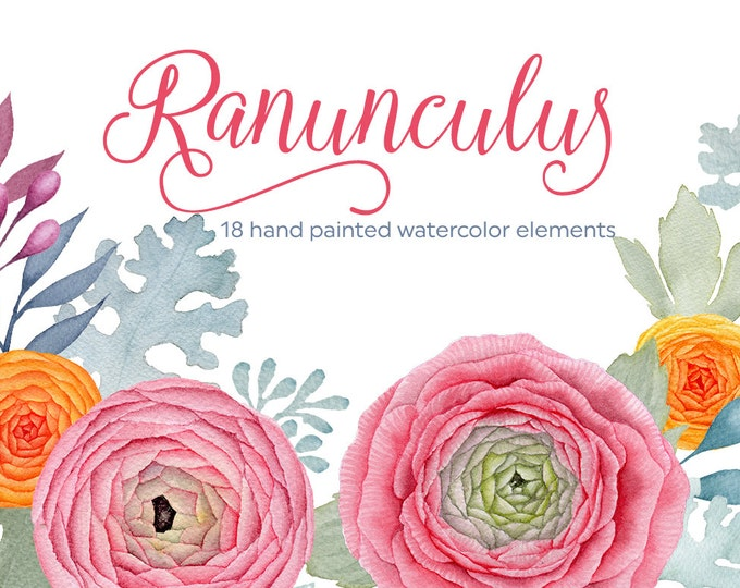Ranunculus clipart, digital watercolor, watercolor flowers clipart, wedding invitation, scrapbooking, boho flowers, hand painted, diy invite