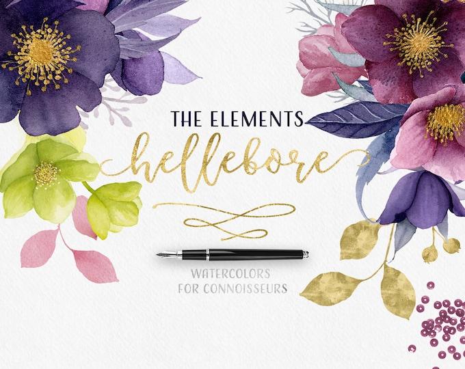 Watercolor flowers clipart, floral clip art, Hellebore, Gold, Wedding flower graphics, boho, flower illustrations, scrapbooking