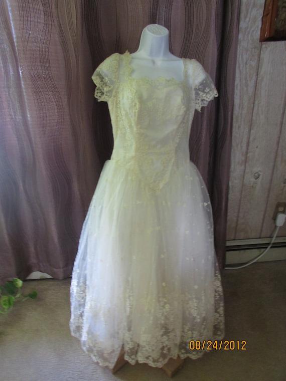 Vintage Ladies Short Wedding Lace Dress Button Up