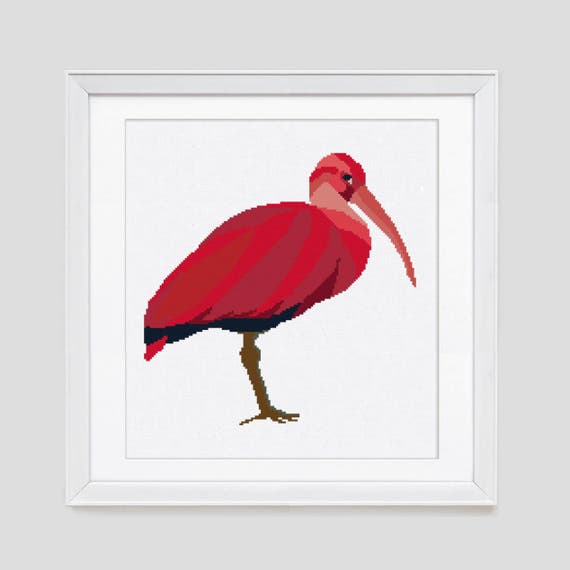 Modern Cross Stitch Pattern Scarlet Ibis Cross Stitch Etsy