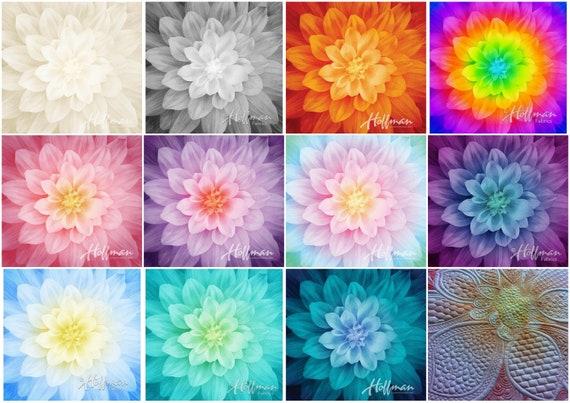 IN STOCK Dream Big Panel - FIRE Supernova Panel - Digital Print P4389-310 -  Jeanie Sumrall-Ajero - Hoffman - 100% Cotton - 20 In Stock