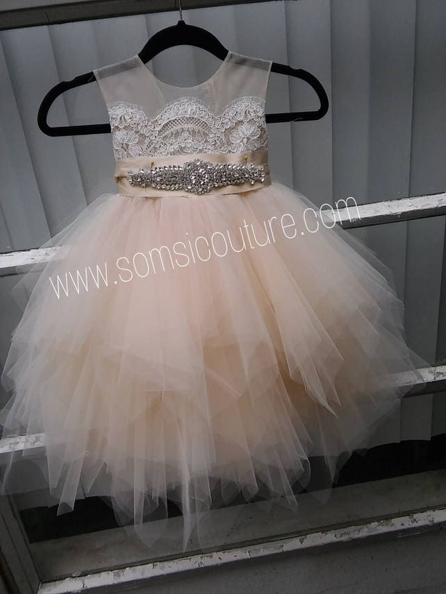 597dcf3de Ballade del Vientre Blush Flower Girl Dress  Birthday Tutu Dress ...