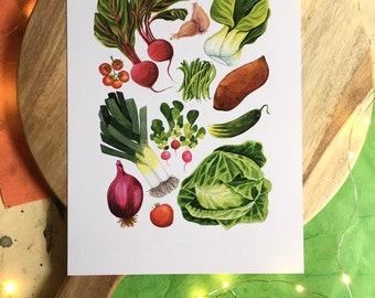 Garden Vegetables Illustration - A4 Print, Garden Art, Watercolor Food Illustration, Art for Kitchen