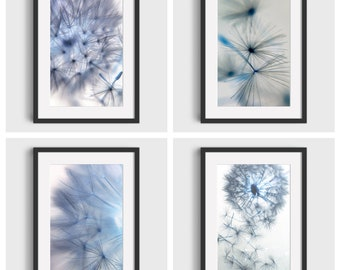 Set of 4 Dandelion Flower Prints, Beautiful Wall Decor