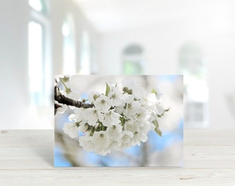 White Blossom Photographic Greeting Card