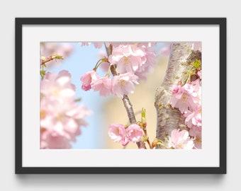 Pink Blossom Print, Flower Wall Art